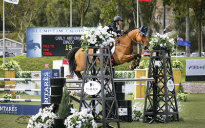 Carly Anthony And Chacco Claim 2nd Place In The FEI CSI2* $75K Gold Tour Grand Prix