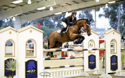 Shawn Casady and Fenna Win Blenheim EquiSports U25 Jumper Classic